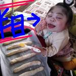 食いしん坊娘あんじの女子力向上計画!~クッキング編~
