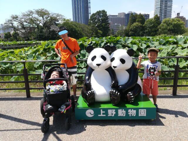 パンダと初対面!ドリームデイ・アット・ザ・ズーin上野動物園